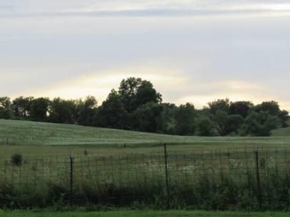 trail-fence
